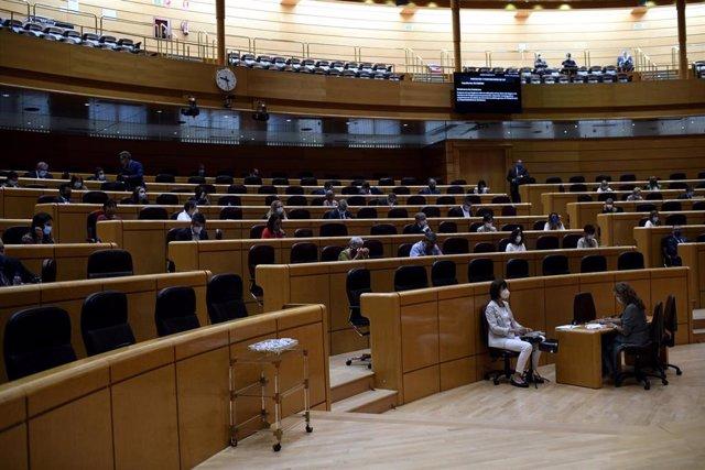 Hemiciclo del Senado durante un pleno en Madrid (España), a 9 de septiembre. Esta sesión es la continuación de la del día anterior, en la que se produjo la comparecencia del presidente del Gobierno a petición propia.