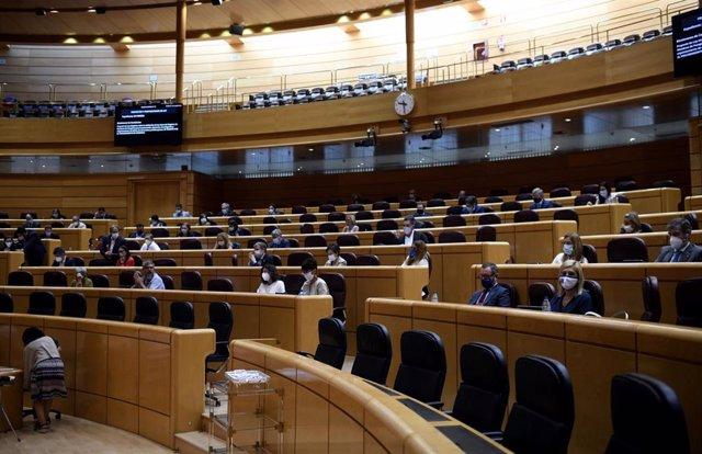 Hemiciclo del Senado durante un pleno en Madrid (España), a 9 de septiembre. Esta sesión es la continuación de la del día anterior, en la que se produjo la comparecencia del presidente del Gobierno.