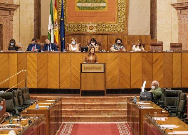 La consejera de Agricultura, Ganadería, Pesca y Desarrollo Sostenible, Carmen Crespo, comparece en el Pleno del Parlamento andaluz.