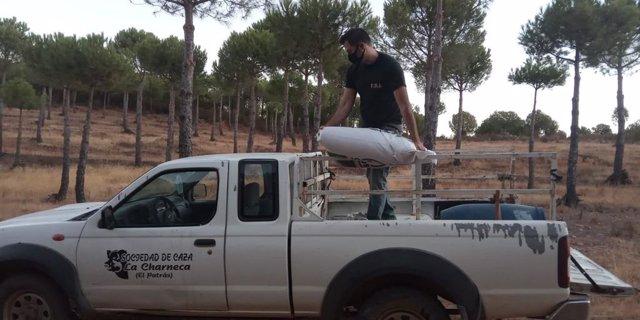 Cazadores de Huelva reparten comida a los animales afectados por el incendio de Almonaster la Real (Huelva).