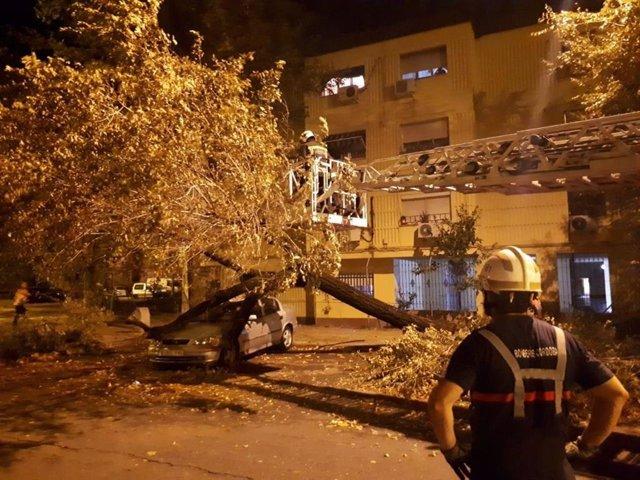 Actuación de los  bomberos de Córdoba ante los daños por la lluvia y el viento.