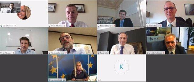 Reunión virtual de distribuidores europeos de gas con la comisaria europea de Energía