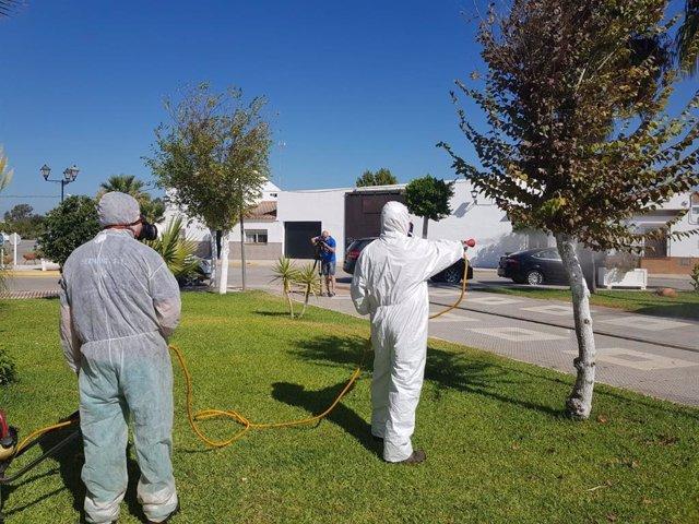 Labores de fumigación contra mosquitos en Los Palacios