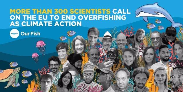Más de 300 científicos piden a la UE el fin de la sobrepesca de forma urgente pa