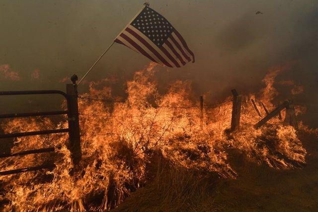 EEUU.- Los incendios de California dejan ya 12 muertos