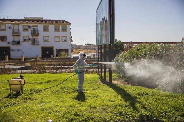 Un trabajador durante las labores de fumigación contra los mosquitos causantes del virus del Nilo en Coria del Río, (Sevilla, Andalucía, España), a  17 de agosto de 2020. (Foto de archivo).