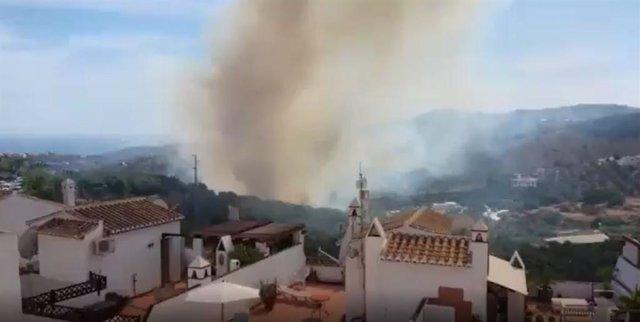 Incendio forestal declarado en Frigiliana