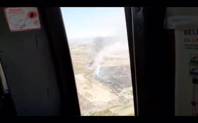 Incendio forestal en Arenas del Rey