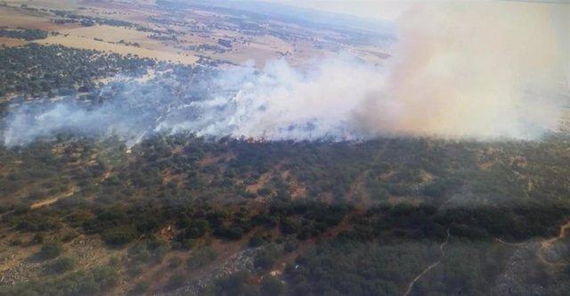 Incendio forestal en Morales de Rey (Zamora).