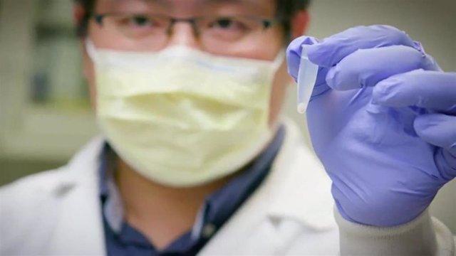 Hallan una molécula capaz de neutralizar al coronavirus