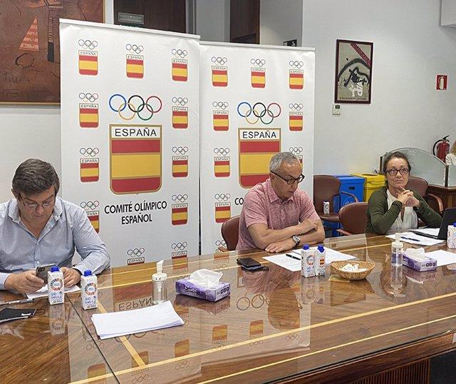 Reunión de la Comisión Permanente y el Comité Ejecutivo del Comité Olímpico Español (COE)