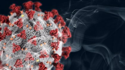 COVID-19, SARS y MERS revela similitudes que sugieren posibles tratamientos