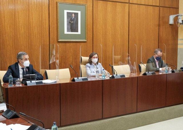 El consejero de Hacienda, Juan Bravo, este miércoles durante su comparecencia parlamentaria en comisión.