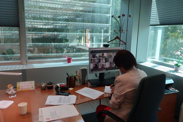 Reunión telemática de la Mesa Sectorial.