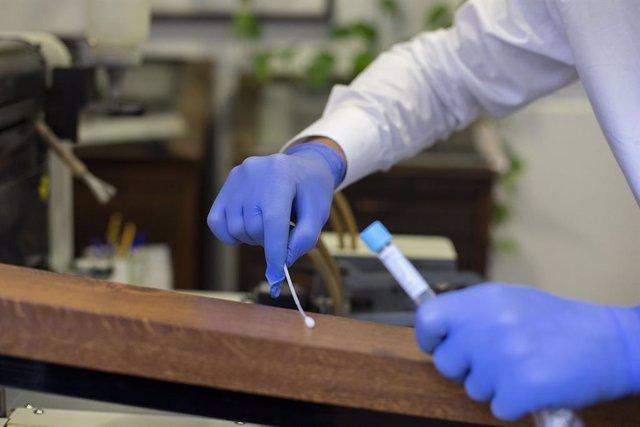 Prova PCR