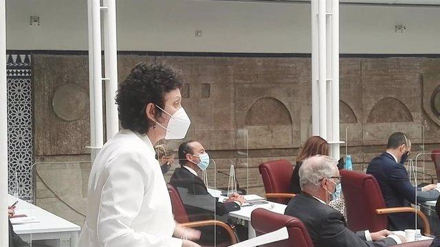 María Marín Martínez, portavoz del Grupo Parlamentario Mixto, durante su intervención