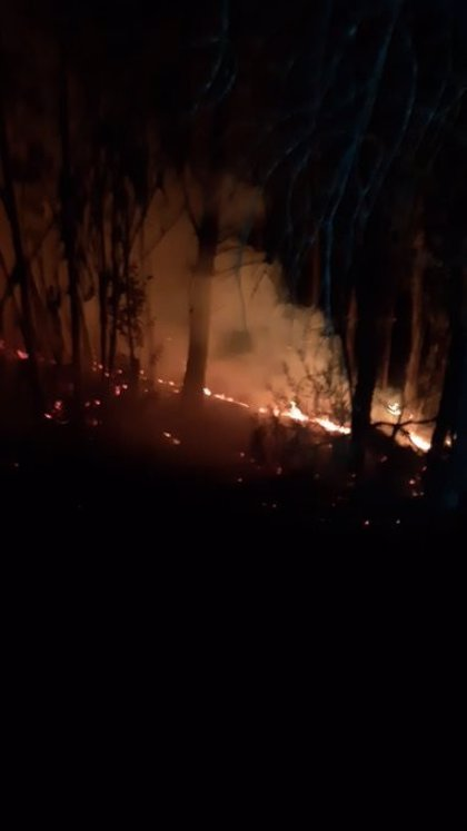 Declarado un incendio forestal en un paraje de Beas (Huelva)