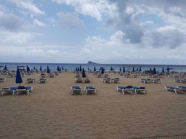 L'Illa de Benidorm al fondo y en primer término amacas en la playa.