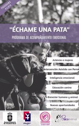 Np Ciudad Real Pone En Marcha Un Proyecto Piloto De Asistencia A Victimas De Violencia De Genero Con Perros