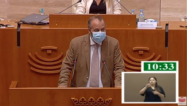 El consejero de Economía, Ciencia y Agenda Digital de la Junta, Rafael España, en su comparecencia en la Asamblea para hablar sobre medidas frente al Covid-19