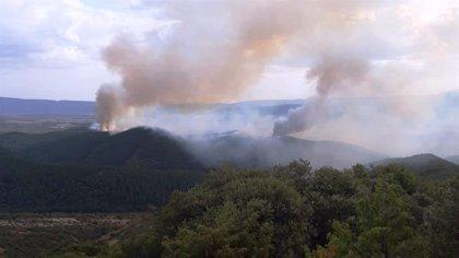 Bomberos y medios aéreos trabajan para controlar un incendio que afecta a una zona de pinta en Lónguida