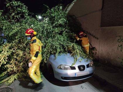 Los Bomberos realizan diversas intervenciones en Jaén relacionados con fuertes rachas de viento