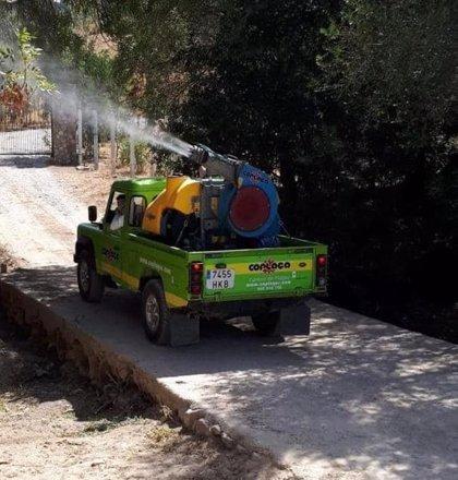 """El alcalde de Vejer (Cádiz) ordena una nueva fumigación y ve """"fundamental"""" hacerlo también en el resto de pueblos"""