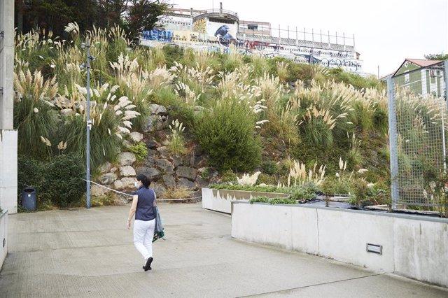 Los restos hallados en Santander podrían ser de una joven desaparecida en Ciudad