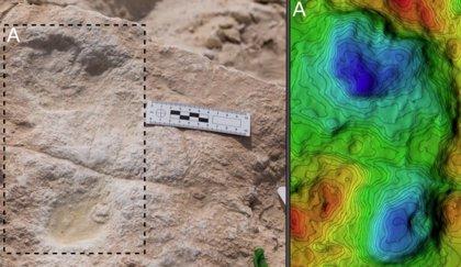 Huellas humanas de 120.000 años halladas en un antiguo lago de Arabia