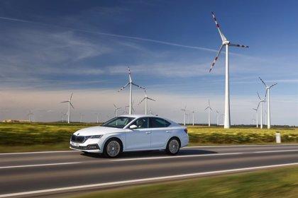 Skoda ya admite pedidos en España de los nuevos Octavia iV, e-TEC, RS y Scout