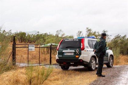 Los restos óseos encontrados en la finca donde buscan a Manuela Chavero son trasladados para su identificación