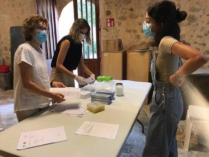 Los familiares de unas 60 víctimas participan en el protocolo de ADN activado en la fosa de Son Coletes