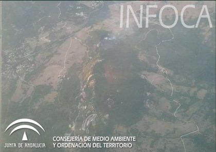 Declarado un incendio forestal en un paraje de Algeciras (Cádiz)