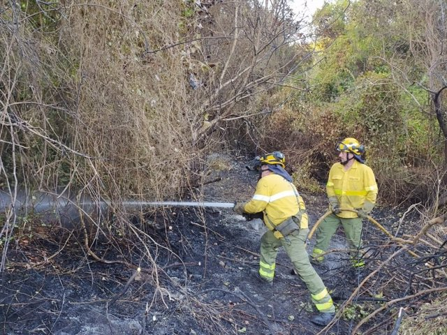 Bomberos trabajando en el incendio forestal del Cortijo la Hoya en Algeciras (Foto de archivo).