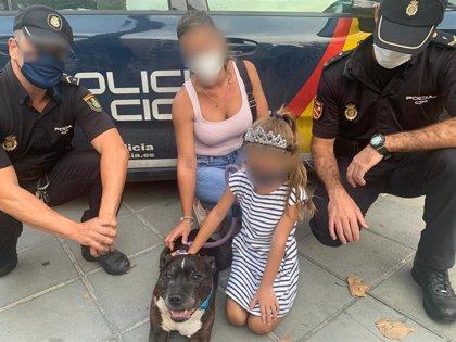 Detenido por arrastrar a un perro con su coche tras mantener una discusión de tráfico con sus dueños