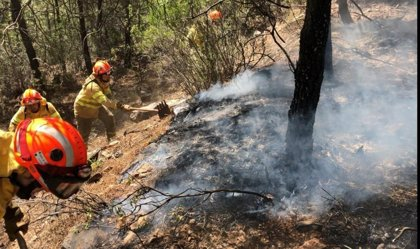 Los incendios forestales han calcinado 33 hectáreas en la última semana en Extremadura