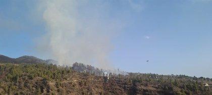 Detenido por provocar tres incendios en la isla de La Palma