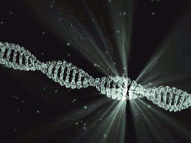 La enzima XPG interviene en el proceso de reparación del ADN. /