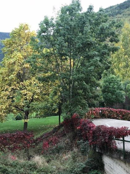 El otoño será cálido y seco en Huesca, según la AEMET