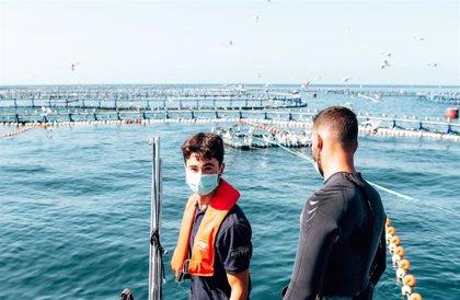 Balfegó, primera empresa del sector pesquero en España en tener la certificación Aenor frente al coronavirus