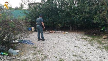 Investigan a un hombre en Palencia por el abandono de 14 perros y 11 gatos