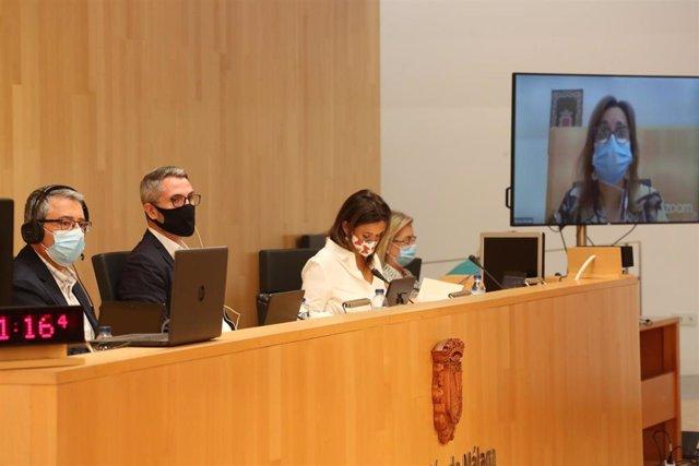 Pleno de la Diputación de Málaga correspondiente al mes de septiembre de 2020