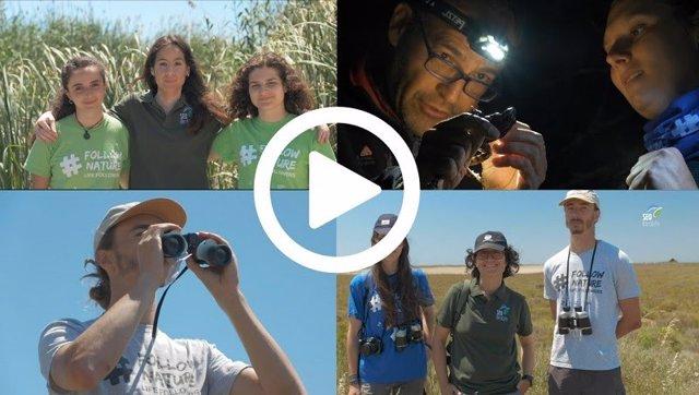 Voluntarios de SEO/Birdlife lanzan un 'Gran Hermano' ornitológico para estudiar el comportamiento de algunas aves
