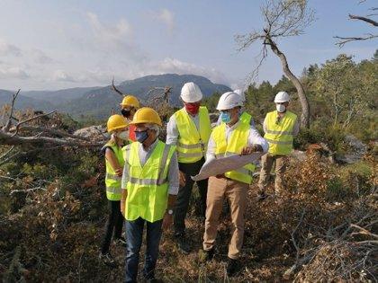 Endesa instala nuevas torres de distribución en la zona afectada por el 'cap de fibló'