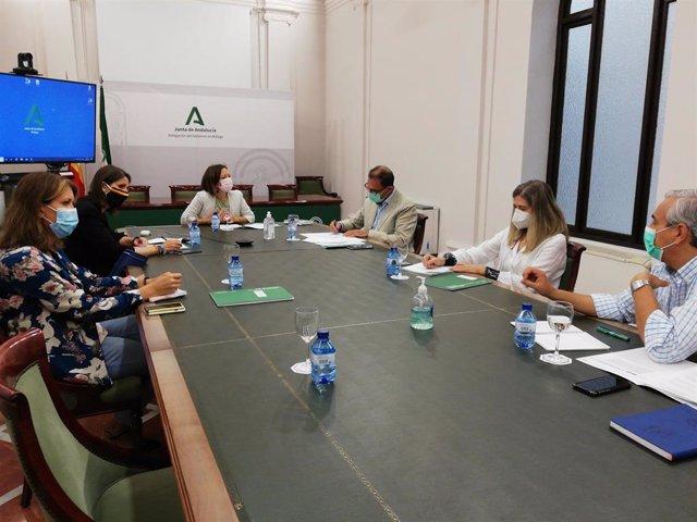 La delegada del Gobierno andaluz en Málaga, Patricia Navarro, durante una reunión