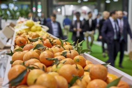 Biofruit Congress llega a finales de octubre donde se analizarán los últimos comportamientos del consumidor
