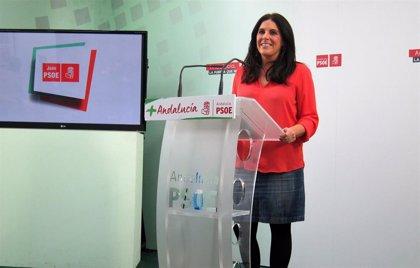 """PSOE de Jaén insta a Martín a """"dejar la propaganda"""" y """"darse un baño de realidad"""" visitando centros de salud y colegios"""