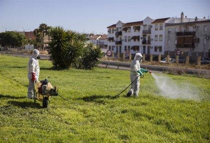 Una mujer de 52 años residente en Valdetorres, primer caso de virus del Nilo detectado en humano en Extremadura
