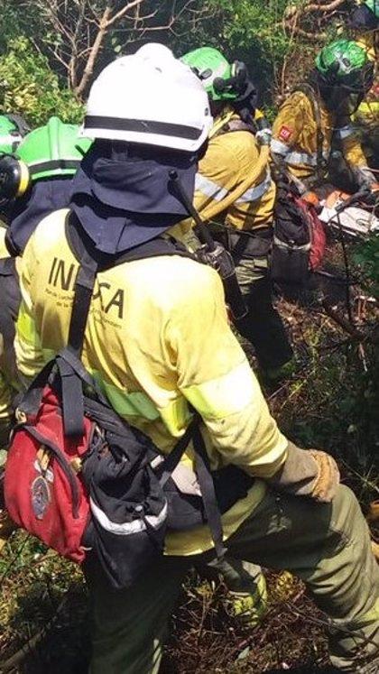 Más de 40 bomberos forestales trabajan en un incendio declarado en Grazalema (Cádiz)