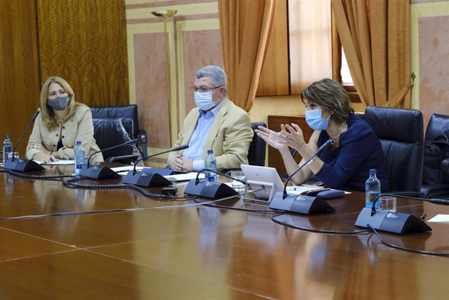 La secretaria general del PSOE-A, Susana Díaz, se reúne con representantes de la Federación Andaluza de Diabéticos en el Parlamento andaluz.